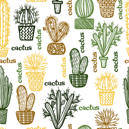 mexico cactus: Flat seamless pattern with succulent plants and cactuses in pots. Vector botanical graphic set with cute florals. Illustration