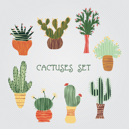 cactus cartoon: Flat colorful illustration of succulent plants and cactuses in pots