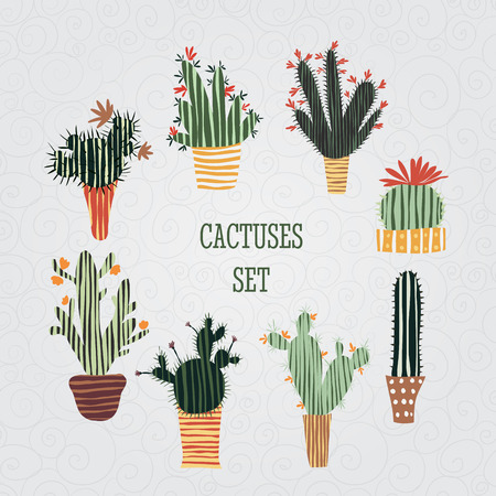 Flat colorful illustration of succulent plants and cactuses in pots