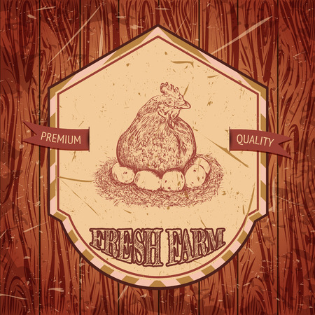 vector illustration  hen: organic chicken farm vintage label with hen with chicks on the grunge background. Retro hand drawn vector illustration poster in sketch style