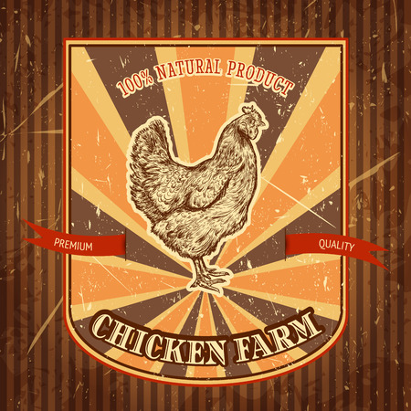 organic chicken farm vintage label with chicken on the grunge background. Retro hand drawn vector illustration poster in sketch style