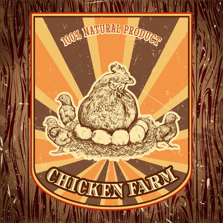 laying: organic chicken farm vintage label with hen with chicks on the grunge background. Retro hand drawn vector illustration poster in sketch style