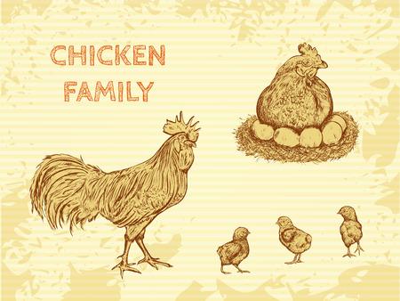 家族の鶏と有機農場ビンテージ ポスター: コック、鶏と鶏。スケッチ風の手描きレトロなベクトル イラスト