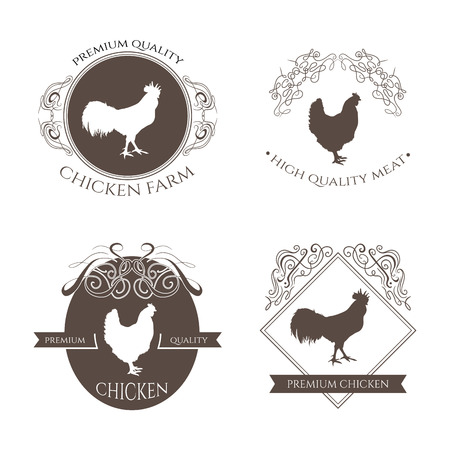 Set chicken and rooster farm logo emblem with calligraphic decorative elements. Natural and fresh farm. Retro stock vector illustration