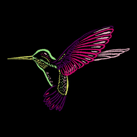Hummingbird coloré sur le tableau noir tracé manuel avec des craies de couleur. Vector illustration.