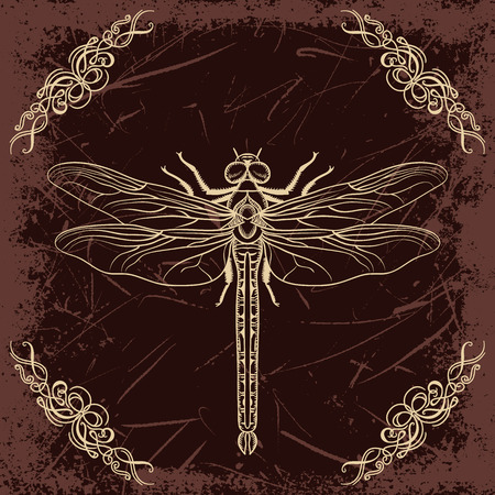 dragonfly: Retro card with dragonfly and calligraphic decorative element on grunge background. Vintage hand drawn  illustration