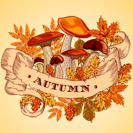 illustration collection: Vintage poster autumn with mushrooms, autumn leaves and ribbon banner. Colorful retro vector illustration. Collection isolated objects