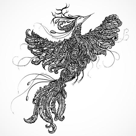 bird of paradise: Decorativo paraíso astas ith aves. Dibujado a mano ilustración esbozo garabato. Pájaro adornado adornado con los ornamentos abstractos. Diseño del tatuaje, la invitación retro, tarjeta, impresión, camiseta, postal Vectores