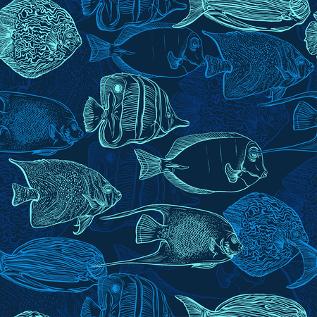 Patrón sin fisuras con la colección de peces tropicales. Conjunto de la vendimia de la mano dibuja fauna marina. Ilustración del vector en línea de estilo de arte. Diseño para la playa de verano, decoraciones. Foto de archivo - 46853095