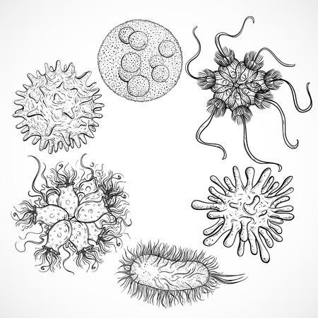 微生物やウイルス。ビンテージ デザインのセット。黒と白の現実的な分離の手には、ベクトル図が描かれました。