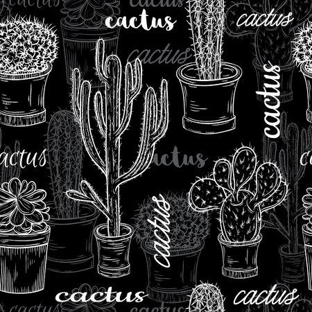 Seamless pattern with flat chalk board black and white illustration of succulent plants and cactuses in pots. Vector botanical graphic set with cute florals.