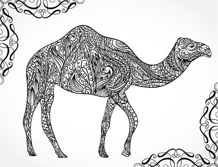 bedouin: Camel decoration with oriental ornaments. Vintage hand drawn illustration