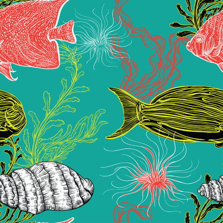 fauna: Seamless pattern with collection of sea shell, marine plants, seaweed and tropical fish. Vintage set of hand drawn marine flora. Vector illustration. Design for summer beach, decorations.