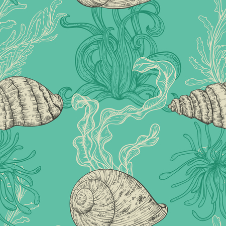 flora vector: Seamless pattern with collection of sea shells, marine plants and seaweed. Vintage set of hand drawn marine flora. Vector illustration in line art style.Design for summer beach, decorations.