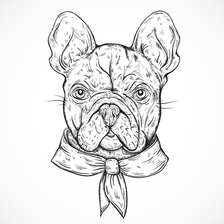 dog pen: French Bulldog. Vintage black and white hand drawn vector illustration in sketch style