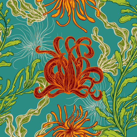 flora vector: Seamless pattern with collection of marine plants, leaves and seaweed. Retro set of colorful hand drawn marine flora. Vector illustration in line art style.Design for summer beach, decorations.
