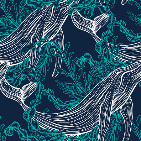 nautical: Seamless pattern with whale, marine plants and seaweeds.Vintage set of black and white hand drawn marine life.Isolated vector illustration in line art style.Design for summer beach, decorations.