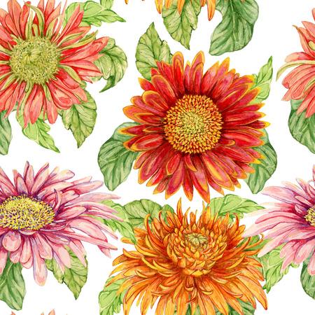 gerbera: Seamless pattern with watercolor gerbera flower. Hand drawn illustration