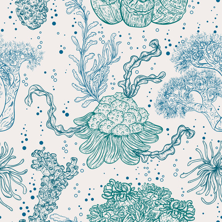 flora vector: Collection of marine plants, leaves and seaweed. Vintage seamless pattern with hand drawn marine flora. Vector illustration in line art style.Design for summer beach, decorations.