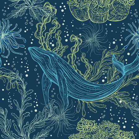 Seamless pattern with whale, marine plants and seaweeds.Vintage hand drawn marine life. Vector illustration 向量圖像