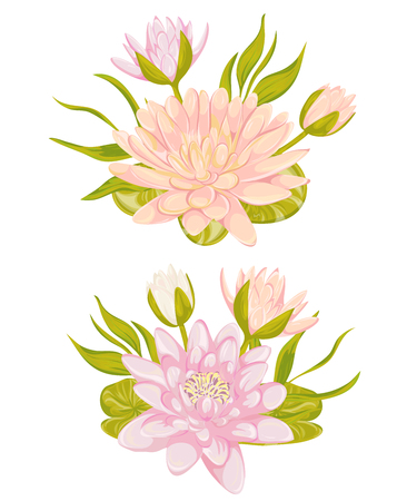 Water lily set. Collection decorative design elements for wedding invitations and birthday cards. Flowers, leaves and buds. Vintage hand drawn vector illustration in watercolor style. Illustration