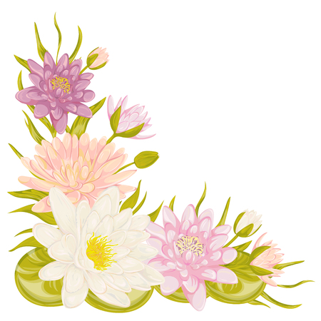 lily flowers collection: Water lily set. Collection decorative floral design elements for wedding invitations and birthday cards. Flowers, leaves and buds. Vintage hand drawn vector illustration in watercolor style. Illustration