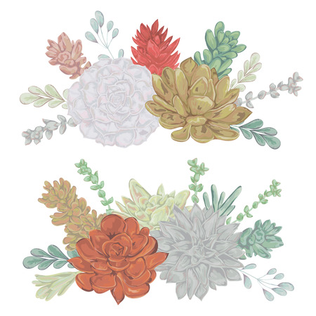 Succulents set. Collection decorative floral design elements for wedding invitations and birthday cards. Isolated elements. Vintage hand drawn vector illustration in watercolor style.