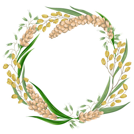 oats: Wreath with rice,oat and millet. Cereals set. Collection decorative floral design elements. Vintage vector illustration in watercolor style.