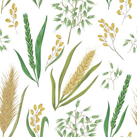Naadloos patroon met ontbijtgranen. Gerst, tarwe, rogge, rijst en haver. Collectie decoratieve bloemen ontwerp elementen. Geïsoleerde elementen. Vintage vector illustratie in aquarel stijl.