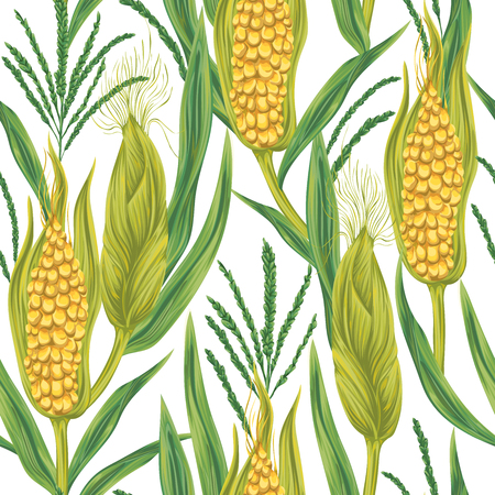 Seamless pattern with corn. Cobs, blossom branch and leaf. Collection decorative design elements. Vintage vector illustration in watercolor style.