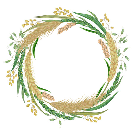 Wreath with cereals. Barley, wheat, rye, rice, millet and oat. Collection decorative floral design elements. Isolated elements. Vintage vector illustration in watercolor style. Ilustração