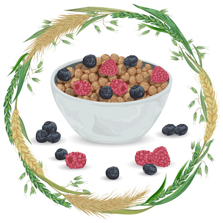 produits céréaliers: Cereal balls in bowl with raspberry, blueberry and wreath with cereals. Barley, wheat, rye and oat. Healthy breakfast. Isolated elements. Hand drawn vector illustration