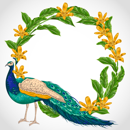 Wreath with peacock, lily flowers and leaves. Illustration