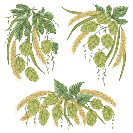 Wreath with hop cones, leaves and branches and wheat. Isolated elements. Vintage hand drawn illustration in watercolor style.