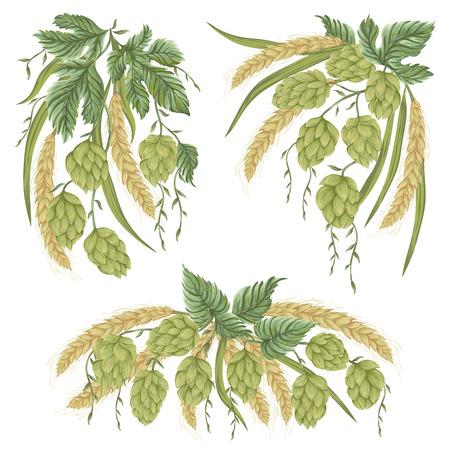 Corona con conos de lúpulo, hojas y ramas y trigo. Elementos aislados. Ilustración dibujada mano de la vendimia en estilo de la acuarela. Foto de archivo - 83469915