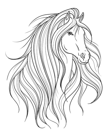 Horse head in line art style. Tattoo art. Isolated element. Black and white hand drawn vector illustration.