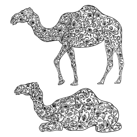 Camel decorated with oriental ornament. Vintage vector illustration