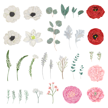 Collection of flowers, leaves and branches. Vintage floral elements isolated objects vector illustration in watercolor style.