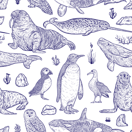 Seamless pattern with arctic animals. Narwhal, snowy owl, albatross, beluga whale, penguin, Atlantic puffin, killer whale, walrus, seal and tundra plants and icebergs. Vector illustration. Stock Illustratie