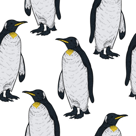 Seamless pattern with penguins on white background. Vintage vector illustration Иллюстрация