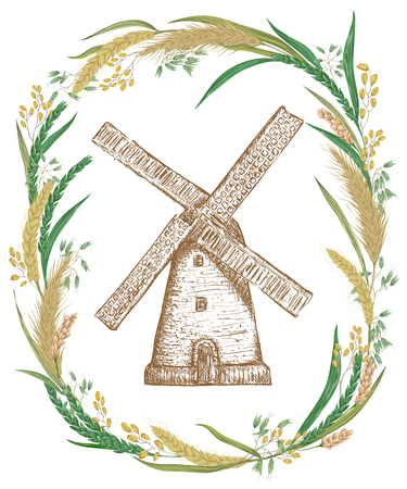 Vintage poster with cereals and vintage windmill. Barley, wheat, rye, rice and oat. Rustic floral background. Vector illustration in watercolor style