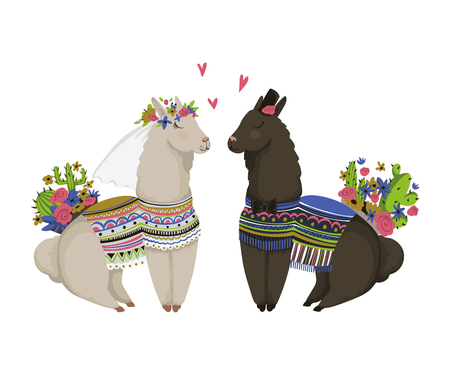 Sweet llamas couple in love. Cute cartoon characters. Happy Valentine's day. Design concept for wedding invitation, greeting card, print, poster. Isolated on white background. Vector illustration