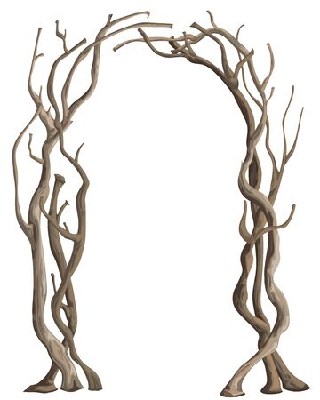 Rustic arch with tree branches. Vintage design template for invitation, card, poster. Isolated element on white background. Vector illustration in watercolor style Ilustracja