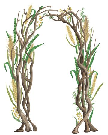Rustic arch with tree branches and cereals. Barley, wheat, rye, rice and oat. Vintage floral design. Vector illustration in watercolor style