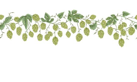 Seamless border with hops. Floral composition with hop cones, leaves and branches. Isolated elements. Vintage hand drawn illustration in watercolor style.
