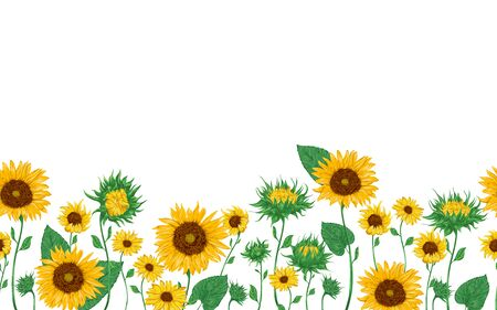 Seamless border with sunflowers set. Isolated elements. Collection decorative floral design elements. Vintage vector illustration in watercolor style. Vektorové ilustrace