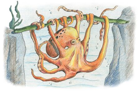 Octopus twine stick with its tentacles in the underwater world. Hand drawn illustration