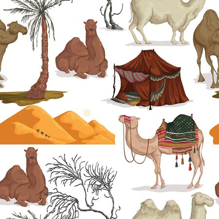 Seamless pattern with camels in different poses, sand dune of desert, nomad tent, dried and palm tree. Vector illustration Ilustração