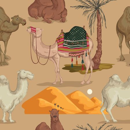 Seamless pattern with camels in different poses, sand dune of desert and palm tree. Vector illustration