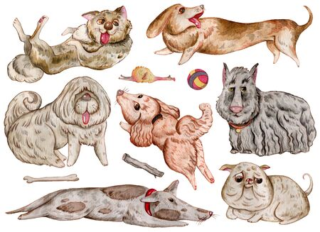 Watercolor dogs and design elements collection. Cute funny characters, dog emotion and feelings. Isolated objects on white background. Hand drawn illustration.
